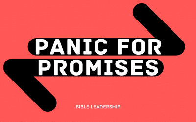 When the World is Shaking: Panic for Promises
